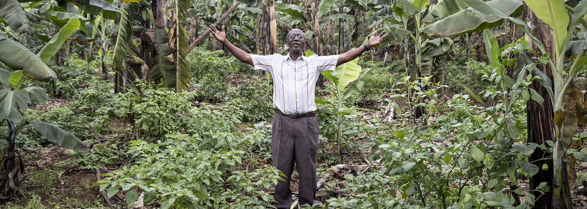 Happy farmer in his productive farm due to bioslurry usage